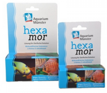 Aquarium Münster Hexamor 20ml