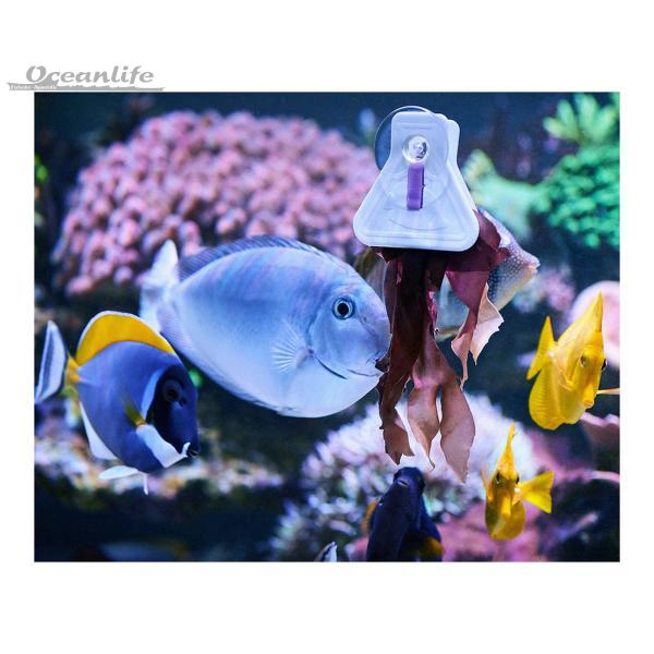 Aquarium Systems A la Carte Food Clips
